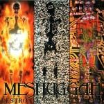 Meshuggah-DestroyErase