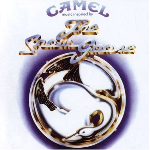 camel_1383571156