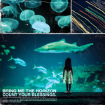 BMTH_Count_Your_Blessings