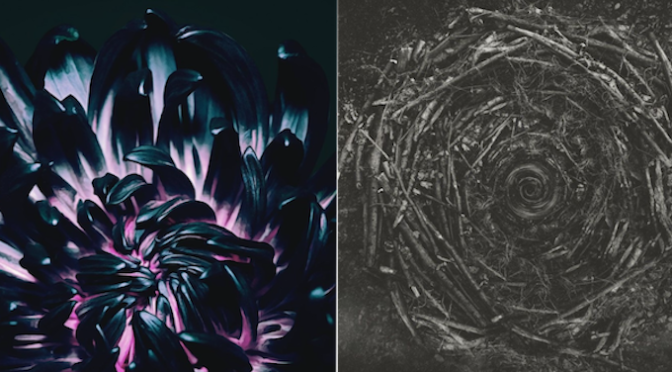NEW DISC REVIEW + INTERVIEW 【THE CONTORTIONIST : OUR BONES, CLAIRVOYANT】